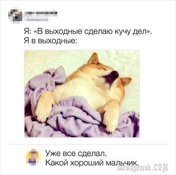 20 остроумных комментариев от тех, кто за словом в карман не лезет