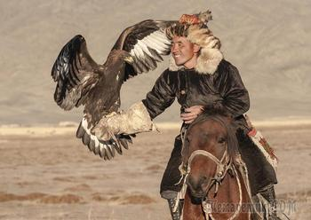 Удивительные фотографии орлиной охоты в Монголии