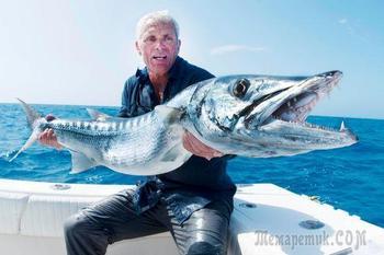 Неудачи, казусы и необычные случаи на рыбалке