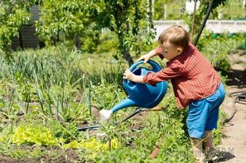7 вещей, которые нужно сделать в саду, прежде чем уехать в отпуск