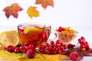 Как поддержать иммунитет: 5 осенних ягод-целителей для здоровья
