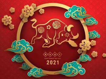 Когда отмечают Новый 2021 год по восточному календарю?