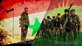 Гениальный ход Москвы: Курды выходят из-под контроля США и отдают нефть России и Асаду