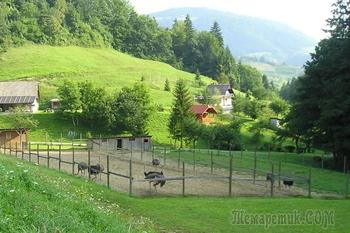 Словения - живописный уголок Европы. Часть 1. Любляна - очаровательная столица небольшой страны