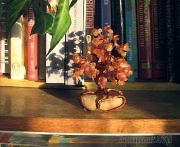 Мастер-класс: «Дерево желаний» из бисера