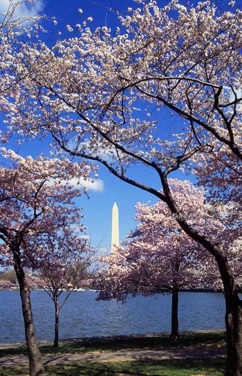 Национальные парки США: ТОП-10