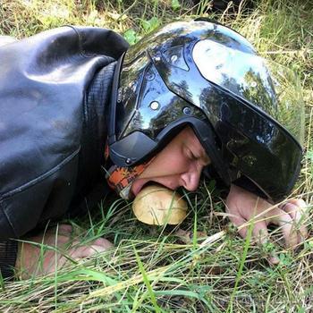 Веселые снимки, демонстрирующие странные поступки голодных людей и животных