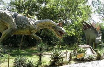Любопытные факты о доисторических животных, обитавших на нашей планете