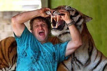 Тигр вместо домашнего питомца: в бразильской семье живут 7 хищников
