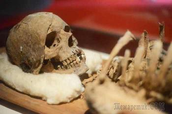 Недавние археологические находки, которые могут пролить свет на наше прошлое