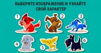 Выбери собаку и узнай о себе всю правду!