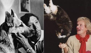 Этих животных любили все в Советском союзе
