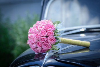 Счастливый 2019 год: 4 знакам Зодиака звезды пророчат долгожданную свадьбу