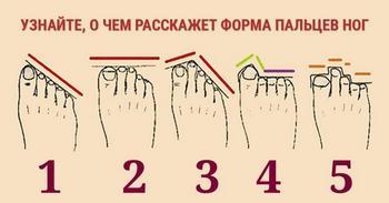 Форма пальцев на ноге расскажет о вашем характере