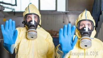 Что такое вирус и для чего ученые его выращивают