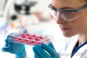 Лечение клеточной терапией – что нужно знать?