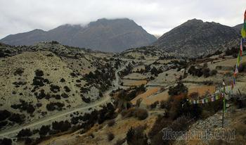Непал. Гималаи. Трек вокруг Аннапурны. 6.  Навал (Нгавал - 3660) - радиальный выход под перевал Канг-Ла (4350) - Навал (Нгавал - 3660)