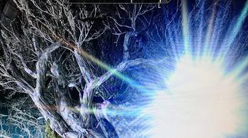 Что это, капище древних богов, или аномальная зона гнездовище молний