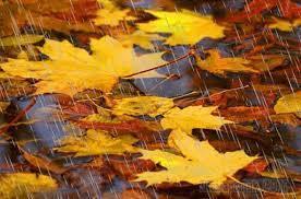 Дождик с листопадом (Стих)