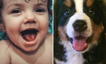 Животные могут выглядеть так же эмоционально, как и дети