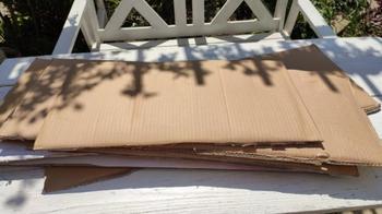 Неординарная идея из картонных коробок