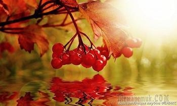 Осенний костёр (Стих)