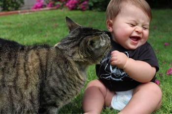 25 забавных фотоподтверждений, что котики и детки — неразлучны