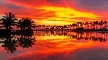 Гавайские фишки