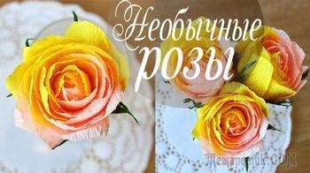 Необычные розы нескольких цветов из бумаги