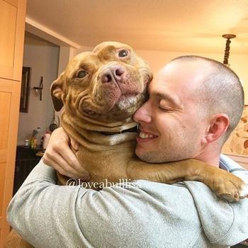 Фрикаделька — благодарный пес, который счастлив, что его забрали из приюта