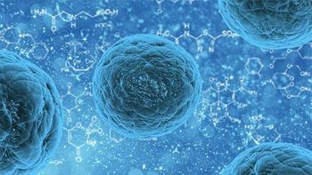 Научные прорывы, которые могут кардинально изменить жизнь человечества