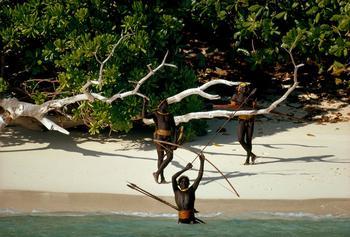 5 потрясающих пляжей, где вас обязательно съедят… или убьют