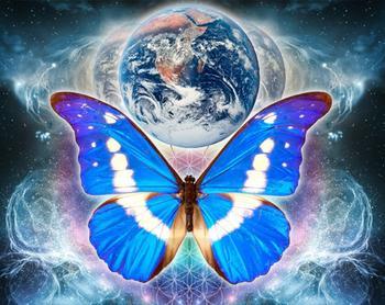 Эффект бабочки – что это значит. Неправильно понятый термин