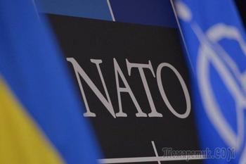Зрада: Венгрия вновь заблокировала заседание комиссии Украина-НАТО
