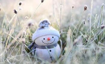 Не зимняя зима (Стих)