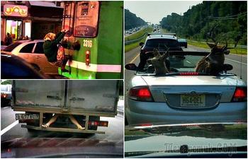 17 ситуаций на дороге, которые удивление, но и безудержный смех