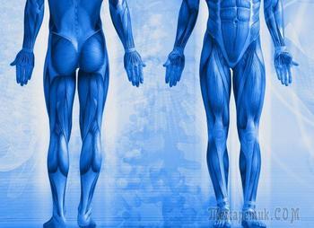 10 вещей, которые происходят с человеческим телом в космосе