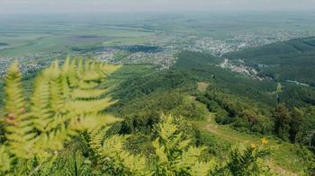 «Дышал бы этим простором»: зачем туристам ехать в Алтайский край