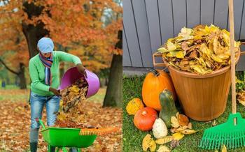 Нужно ли убирать из сада опавшие осенью листья
