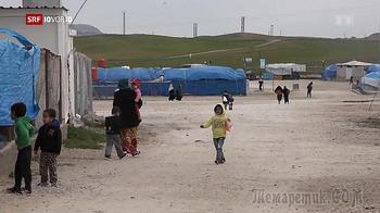 SRF: Швейцария одной из первых отказалась от «возвращенцев» из ИГ