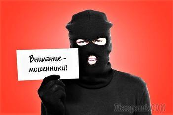 AmirCapital / Команда фонда / Мошенники? часть 2