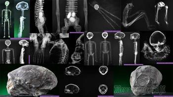 Инопланетные мумии из Перу: мнение экспертов