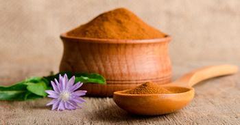 Корень цикория — отличный заменитель кофе, который лечит диабет, запор и остеоартрит