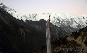 Непал. Гималаи. Трек вокруг Аннапурны. 11. Шери-Лодж (4050) - Як Кхарка (4018) -  Ледар (4200)