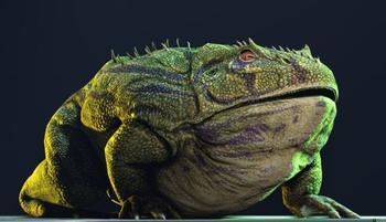 Самая крупная лягушка в истории могла питаться динозаврами