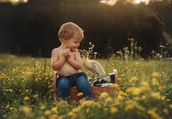 Максимальная мимишность: малыши и животные