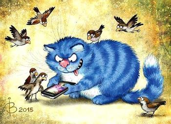 Истории о котах в картинках