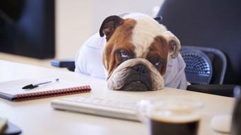 9 признаков, что на работе вас не любят, и как это изменить
