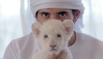 Как живет наследник престола Арабских Эмиратов