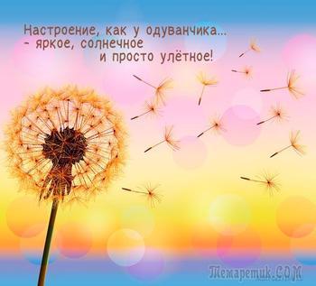 Я жизнь люблю! (Cтих)